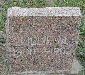 FESTER, LILLIE - Buffalo County, Nebraska | LILLIE FESTER - Nebraska Gravestone Photos