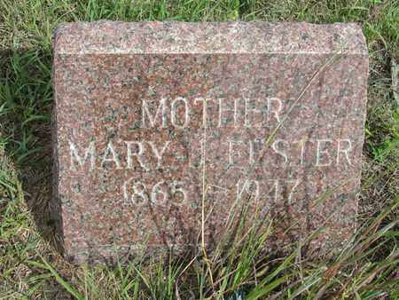 FESTER, MARY - Buffalo County, Nebraska | MARY FESTER - Nebraska Gravestone Photos