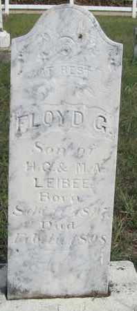 LEIBEE, FLOYD - Buffalo County, Nebraska | FLOYD LEIBEE - Nebraska Gravestone Photos