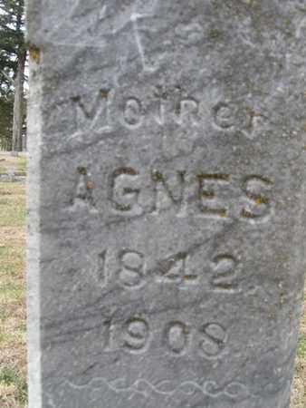 MILLER, AGNES - Buffalo County, Nebraska   AGNES MILLER - Nebraska Gravestone Photos