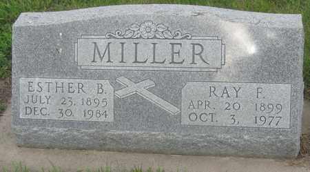 MILLER, RAY - Buffalo County, Nebraska | RAY MILLER - Nebraska Gravestone Photos