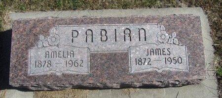 PABIAN, JAMES - Buffalo County, Nebraska   JAMES PABIAN - Nebraska Gravestone Photos
