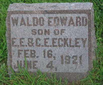 ECKLEY, WALDO EDWARD - Burt County, Nebraska | WALDO EDWARD ECKLEY - Nebraska Gravestone Photos
