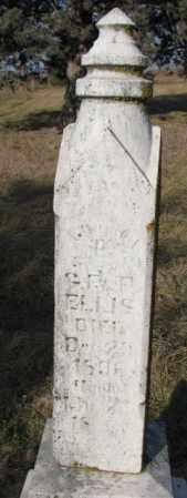 ELLIS, CHURLEY - Burt County, Nebraska   CHURLEY ELLIS - Nebraska Gravestone Photos