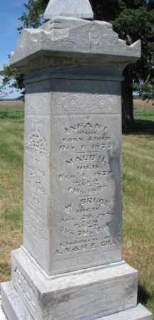 GILL, W. BRUCE - Burt County, Nebraska | W. BRUCE GILL - Nebraska Gravestone Photos