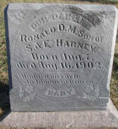 HARNEY, RONALD D.M. - Burt County, Nebraska   RONALD D.M. HARNEY - Nebraska Gravestone Photos