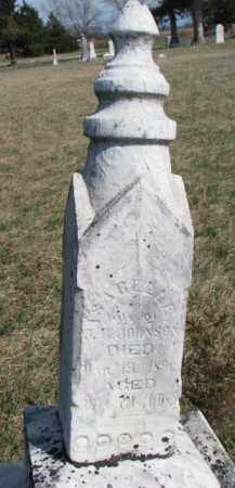 JOHNSON, ISABELLE - Burt County, Nebraska | ISABELLE JOHNSON - Nebraska Gravestone Photos