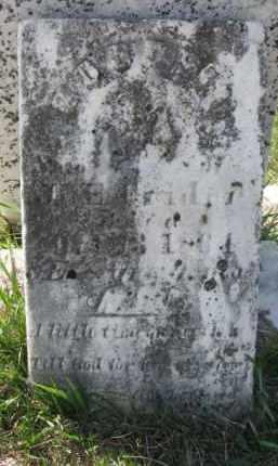 KRETTER, GODFRID - Burt County, Nebraska | GODFRID KRETTER - Nebraska Gravestone Photos