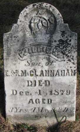 MCCLANNAHAN, WILLIE H. - Burt County, Nebraska   WILLIE H. MCCLANNAHAN - Nebraska Gravestone Photos