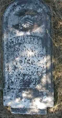 NETTLETON, ELIZABETH A. - Burt County, Nebraska | ELIZABETH A. NETTLETON - Nebraska Gravestone Photos