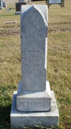 PETERSON, A. U. - Burt County, Nebraska | A. U. PETERSON - Nebraska Gravestone Photos