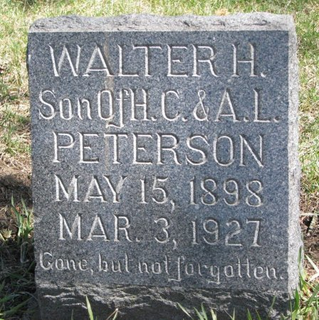 PETERSON, WALTER H. - Burt County, Nebraska | WALTER H. PETERSON - Nebraska Gravestone Photos