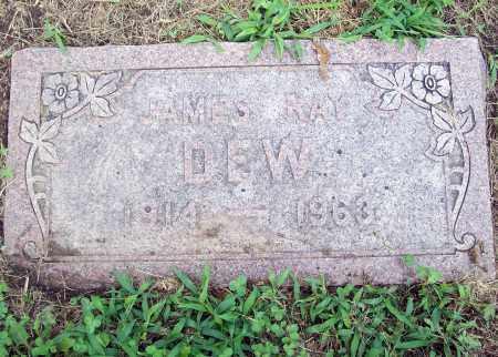DEW, JAMES RAY - Cass County, Nebraska | JAMES RAY DEW - Nebraska Gravestone Photos