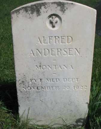 ANDERSEN, ALFRED - Cedar County, Nebraska | ALFRED ANDERSEN - Nebraska Gravestone Photos