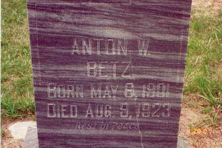 BETZ, ANTON W. - Cedar County, Nebraska | ANTON W. BETZ - Nebraska Gravestone Photos