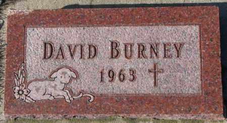 BURNEY, DAVID - Cedar County, Nebraska | DAVID BURNEY - Nebraska Gravestone Photos