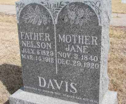 DAVIS, JANE - Cedar County, Nebraska | JANE DAVIS - Nebraska Gravestone Photos