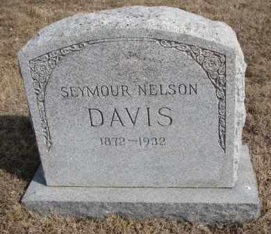 DAVIS, SEYMOUR NELSON - Cedar County, Nebraska   SEYMOUR NELSON DAVIS - Nebraska Gravestone Photos