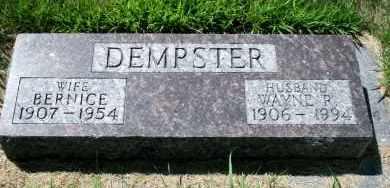 DEMPSTER, WAYNE R - Cedar County, Nebraska | WAYNE R DEMPSTER - Nebraska Gravestone Photos