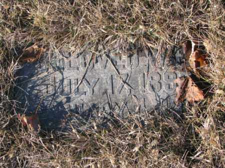 DERLER, BELOVED WIFE - Cedar County, Nebraska | BELOVED WIFE DERLER - Nebraska Gravestone Photos