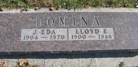 DOMINA, LLOYD E. - Cedar County, Nebraska | LLOYD E. DOMINA - Nebraska Gravestone Photos