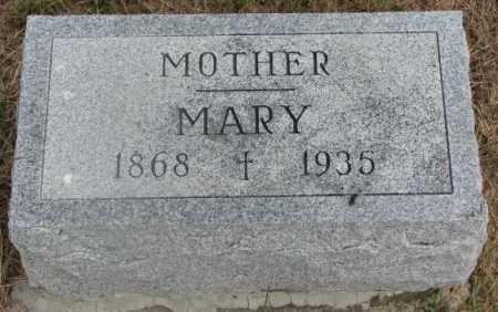 DOMINISSE, MARY - Cedar County, Nebraska | MARY DOMINISSE - Nebraska Gravestone Photos