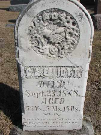 ELLIOTT, C.A. - Cedar County, Nebraska   C.A. ELLIOTT - Nebraska Gravestone Photos