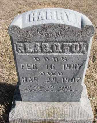 FOX, HARRY - Cedar County, Nebraska   HARRY FOX - Nebraska Gravestone Photos