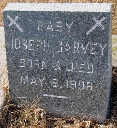 GARVEY, JOSEPH - Cedar County, Nebraska | JOSEPH GARVEY - Nebraska Gravestone Photos