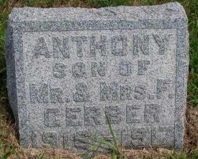 GERBER, ANTHONY - Cedar County, Nebraska | ANTHONY GERBER - Nebraska Gravestone Photos
