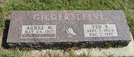 GILDERSLEEVE, AGNES M. - Cedar County, Nebraska | AGNES M. GILDERSLEEVE - Nebraska Gravestone Photos