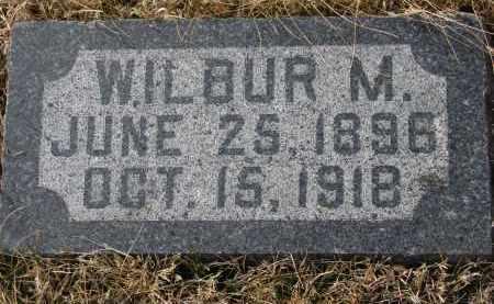 GILES, WILBUR M. - Cedar County, Nebraska | WILBUR M. GILES - Nebraska Gravestone Photos