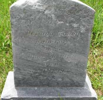 HABERER, RAIMON TONEY - Cedar County, Nebraska | RAIMON TONEY HABERER - Nebraska Gravestone Photos