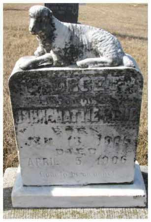 KLUG, GEORGE F. - Cedar County, Nebraska | GEORGE F. KLUG - Nebraska Gravestone Photos