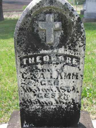 LAMM, THEODORE - Cedar County, Nebraska | THEODORE LAMM - Nebraska Gravestone Photos