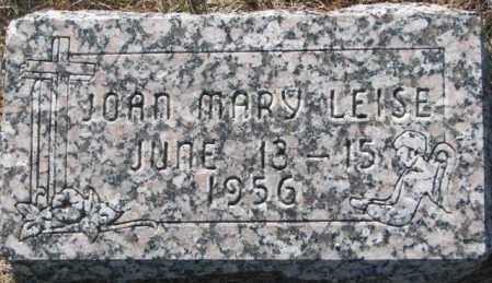 LEISE, JOAN MARY - Cedar County, Nebraska   JOAN MARY LEISE - Nebraska Gravestone Photos