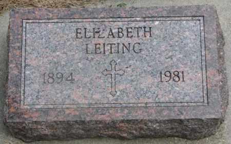 LEITING, ELIZABETH - Cedar County, Nebraska | ELIZABETH LEITING - Nebraska Gravestone Photos