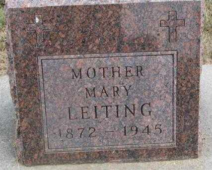 LEITING, MARY - Cedar County, Nebraska   MARY LEITING - Nebraska Gravestone Photos