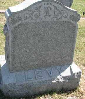 LEVY, CLARA B. - Cedar County, Nebraska   CLARA B. LEVY - Nebraska Gravestone Photos