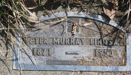 LINDSAY, PETER MURRAY - Cedar County, Nebraska | PETER MURRAY LINDSAY - Nebraska Gravestone Photos