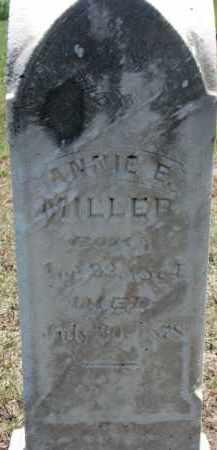 MILLER, ANNIE E. - Cedar County, Nebraska | ANNIE E. MILLER - Nebraska Gravestone Photos