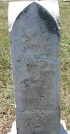 MILLER, JOHN M. - Cedar County, Nebraska | JOHN M. MILLER - Nebraska Gravestone Photos