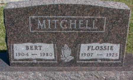 MITCHELL, BERT - Cedar County, Nebraska | BERT MITCHELL - Nebraska Gravestone Photos