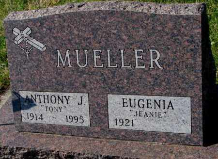 MUELLER, ANTHONY J. - Cedar County, Nebraska | ANTHONY J. MUELLER - Nebraska Gravestone Photos