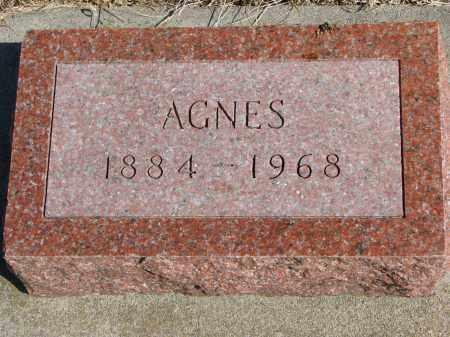 OLSON, AGNES - Cedar County, Nebraska   AGNES OLSON - Nebraska Gravestone Photos