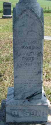 OLSON, ANDERS - Cedar County, Nebraska   ANDERS OLSON - Nebraska Gravestone Photos