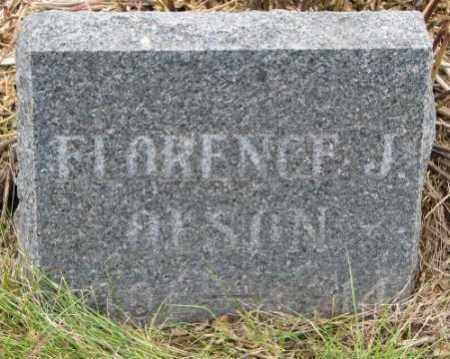 OLSON, FLORENCE J. - Cedar County, Nebraska | FLORENCE J. OLSON - Nebraska Gravestone Photos