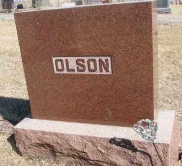 OLSON, FAMILY STONE - Cedar County, Nebraska   FAMILY STONE OLSON - Nebraska Gravestone Photos
