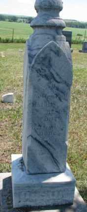 OLSON, LINA - Cedar County, Nebraska | LINA OLSON - Nebraska Gravestone Photos