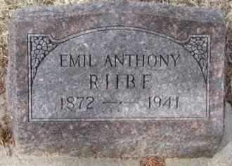RIIBE, EMIL ANTHONY - Cedar County, Nebraska   EMIL ANTHONY RIIBE - Nebraska Gravestone Photos